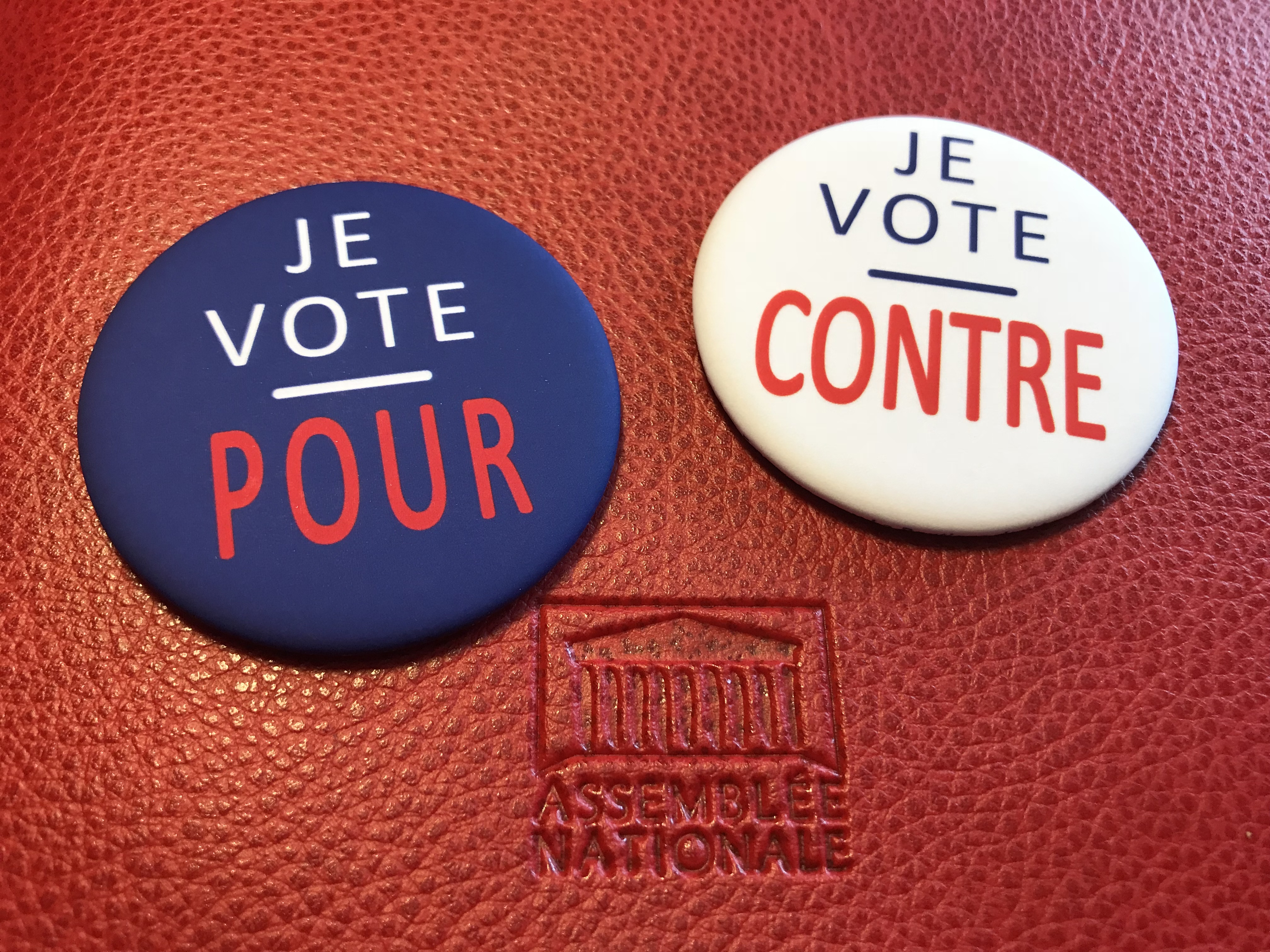 J'ai voté pour / J'ai voté contre