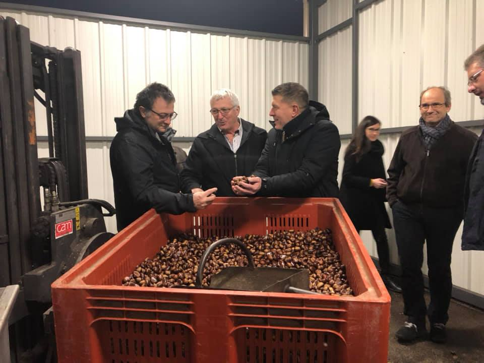 Appel de l'Amicale parlementaire de la châtaigneraie : Que sera la production de châtaignes en France demain ?
