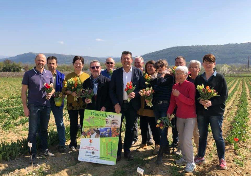 Hommage au bénévoles de l'opération 100 000 tulipes contre le cancer