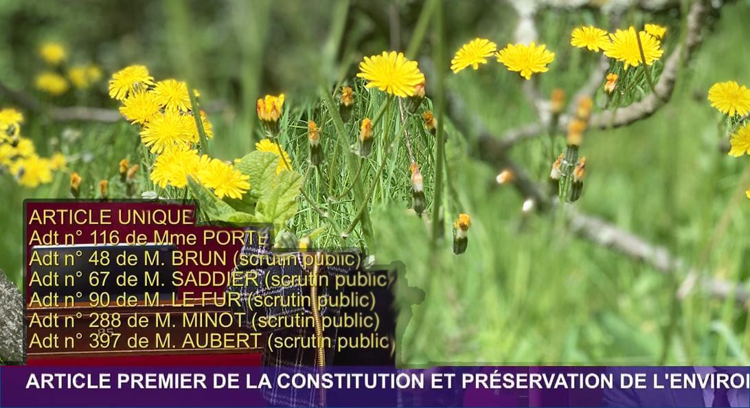 Projet de loi constitutionnelle : Préservation de l'environnement