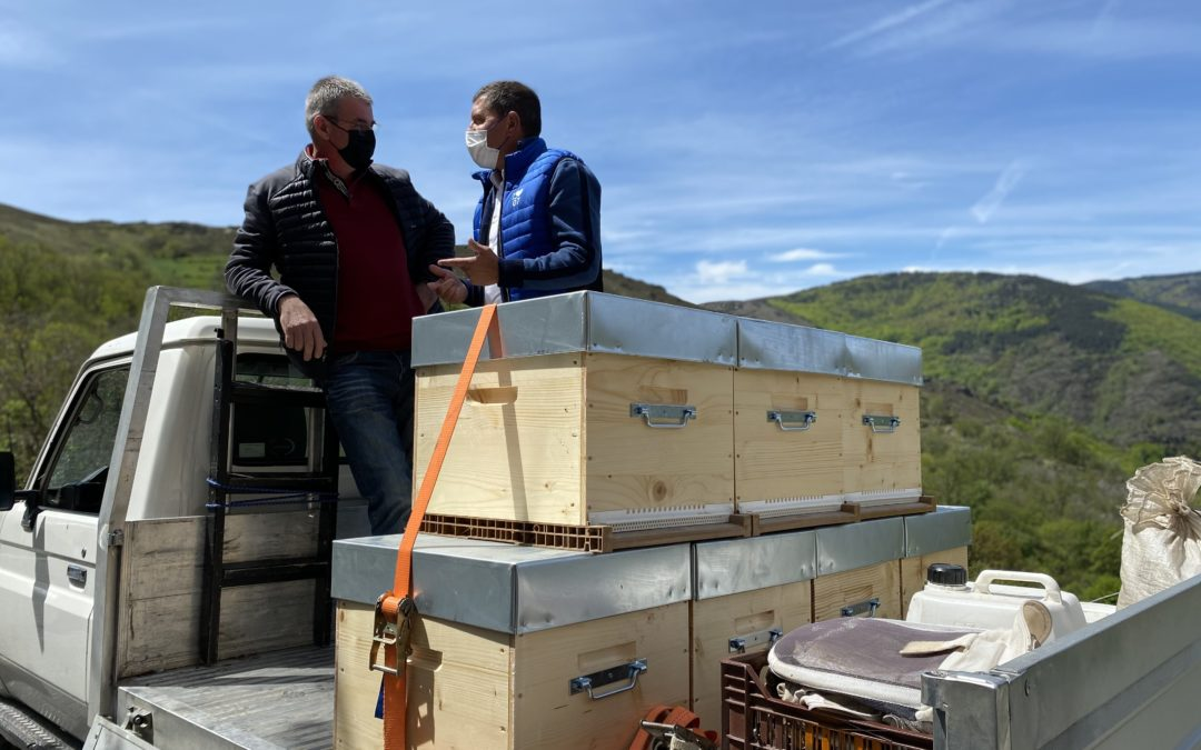 Réunion de travail avec Gérard Delenne, apiculteur à Laval d'Aurelle